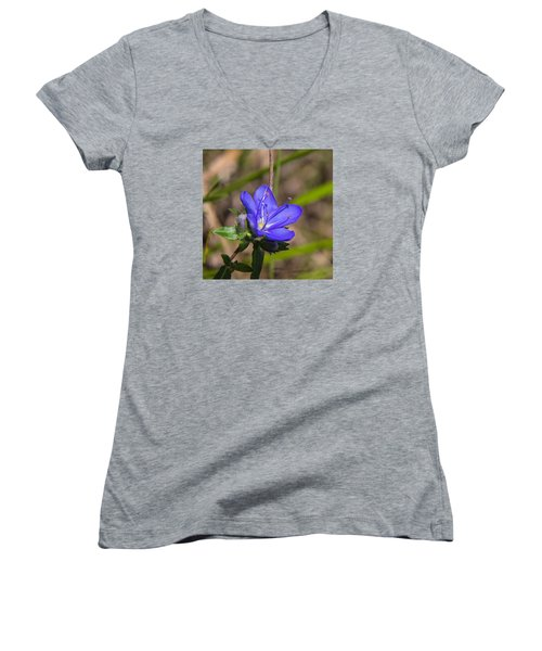 Tall Hydrolea Wildflower Women's V-Neck T-Shirt (Junior Cut) by Christopher L Thomley