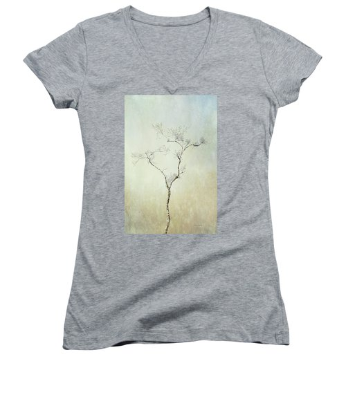 Tall Tree Women's V-Neck