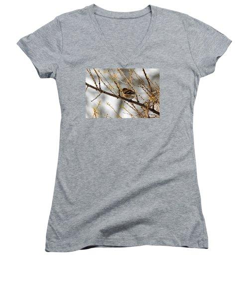 Tamarack Visitor Women's V-Neck T-Shirt (Junior Cut) by Debbie Oppermann