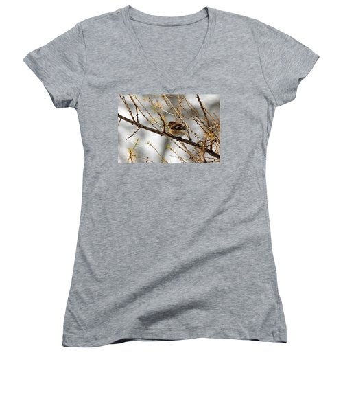 Tamarack Visitor Women's V-Neck T-Shirt