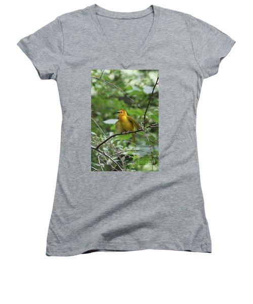 Taveta Golden Weaver #3 Women's V-Neck T-Shirt