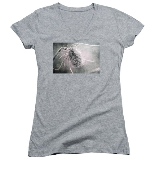 Women's V-Neck T-Shirt (Junior Cut) featuring the photograph Teazel Weed by Tom Mc Nemar