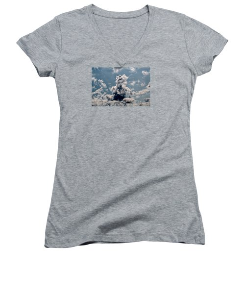 Women's V-Neck T-Shirt (Junior Cut) featuring the photograph Teddy Bear by Leif Sohlman