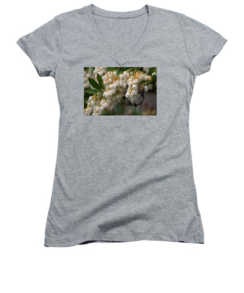 Women's V-Neck T-Shirt (Junior Cut) featuring the photograph Temple Bells Andromedia by Chris Flees
