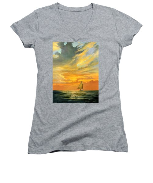 Ten Thousand Islands Women's V-Neck T-Shirt (Junior Cut) by David  Van Hulst