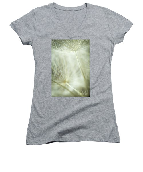Tender Dandelion Women's V-Neck T-Shirt