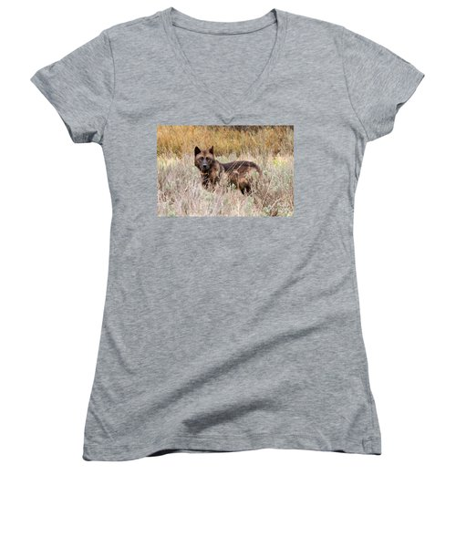 Teton Wolf Women's V-Neck T-Shirt (Junior Cut) by Steve Stuller