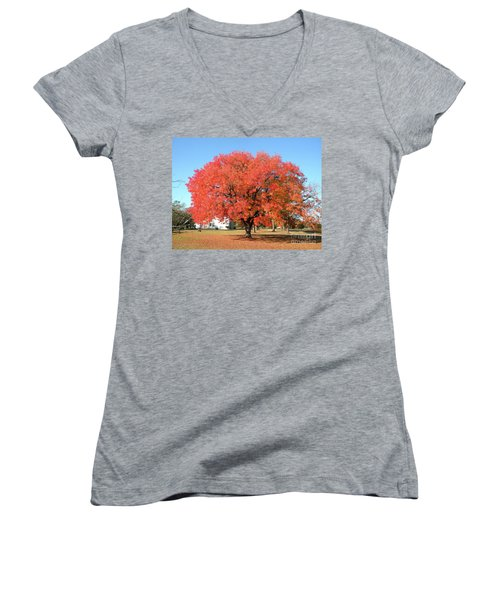Thanksgiving Blessings Women's V-Neck