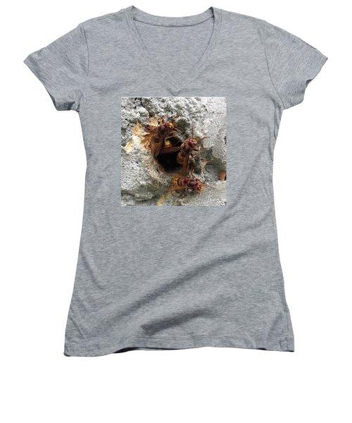 The 4 Hornets Women's V-Neck T-Shirt