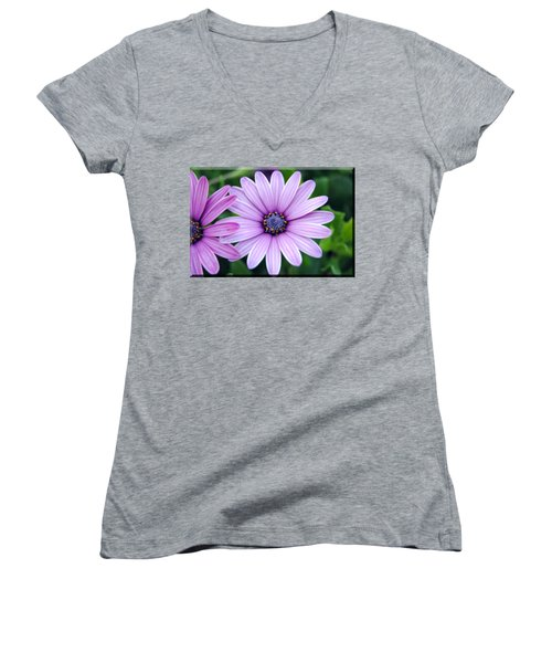 The African Daisy T-shirt 2 Women's V-Neck T-Shirt (Junior Cut) by Isam Awad