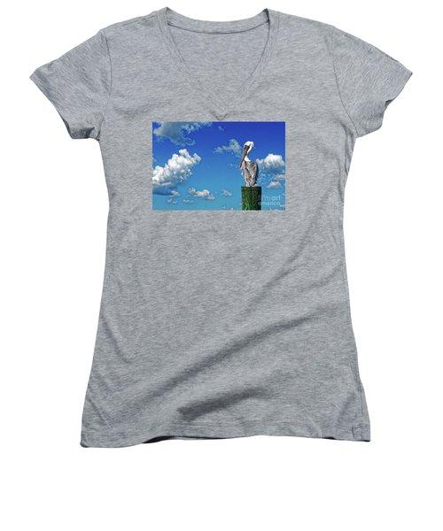 The American Brown Pelican Women's V-Neck T-Shirt (Junior Cut) by Paul Mashburn