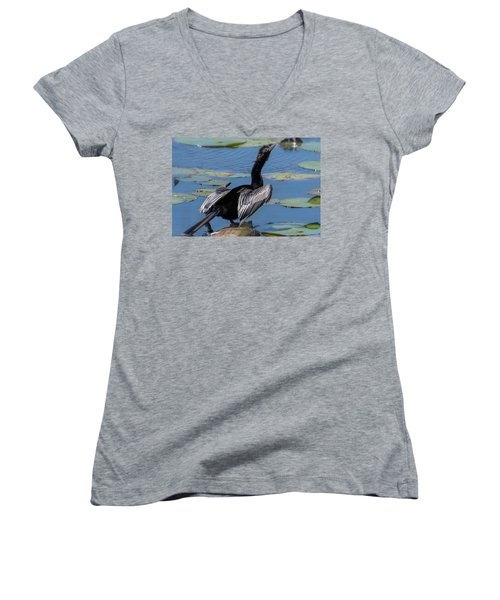 The Anhinga Women's V-Neck (Athletic Fit)