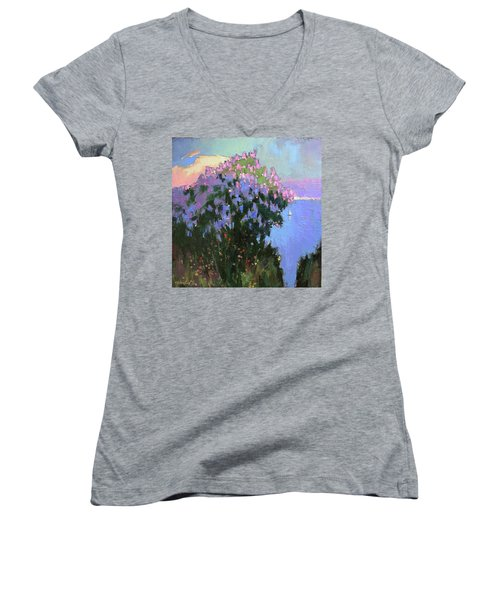 The Aroma Of Wandering Women's V-Neck T-Shirt