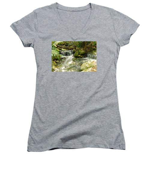 The Babbling Brook Women's V-Neck T-Shirt