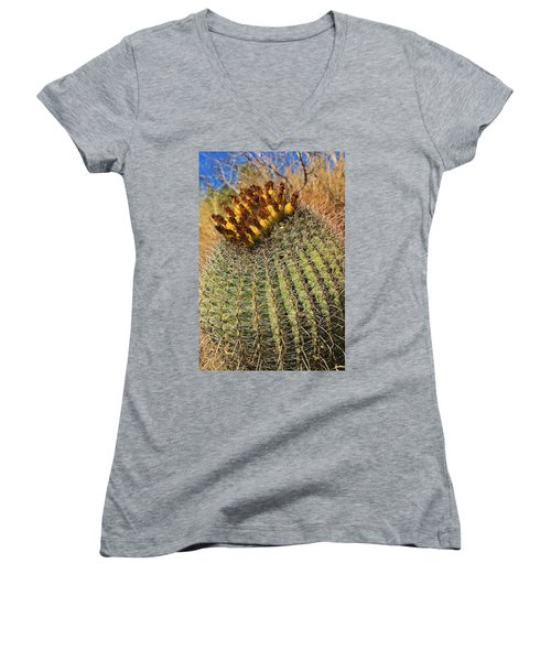 The Barrel Women's V-Neck T-Shirt (Junior Cut) by Sheila Ping