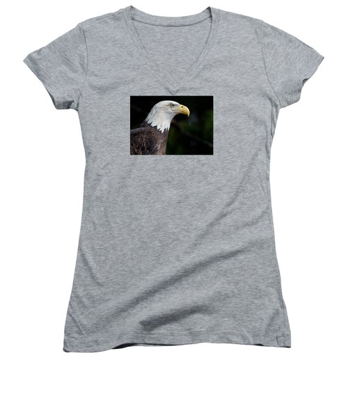 The Beak Pointeth Women's V-Neck T-Shirt