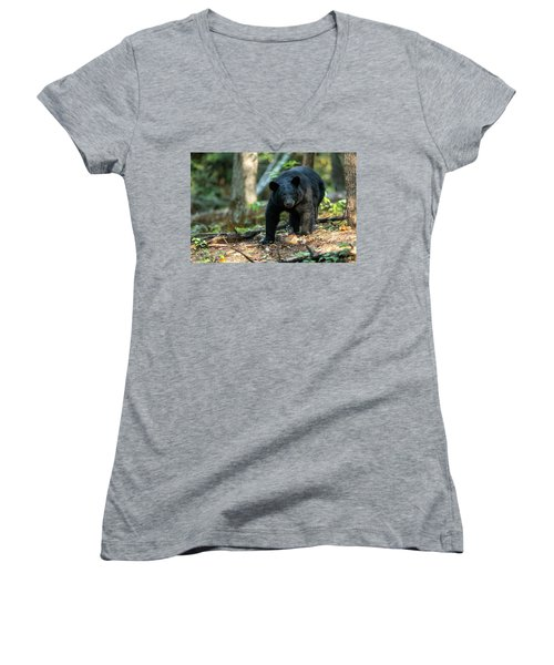 Women's V-Neck T-Shirt (Junior Cut) featuring the photograph The Bear by Everet Regal