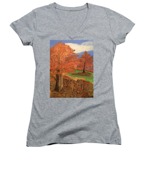 The Beauty Of Autumn  Women's V-Neck (Athletic Fit)