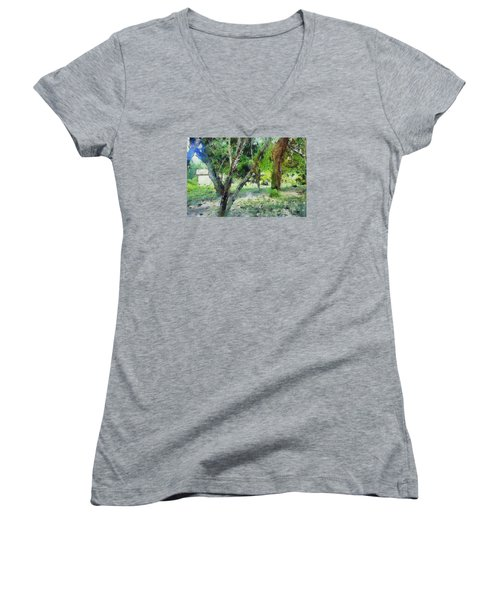 The Beauty Of Trees Women's V-Neck T-Shirt (Junior Cut) by Ashish Agarwal