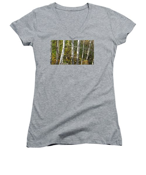 The Birches Women's V-Neck T-Shirt