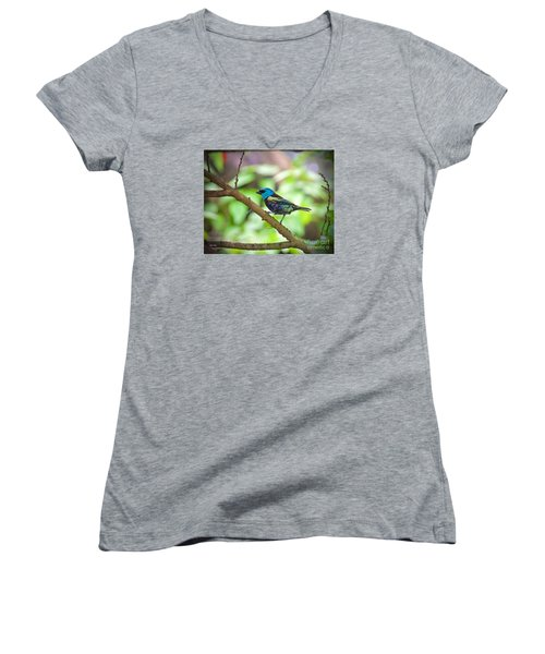 Women's V-Neck T-Shirt (Junior Cut) featuring the painting The Blue Necked Tanager by Judy Kay