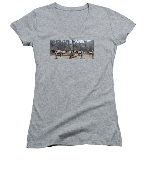 Women's V-Neck T-Shirt (Junior Cut) featuring the photograph The Boys by Billie Colson
