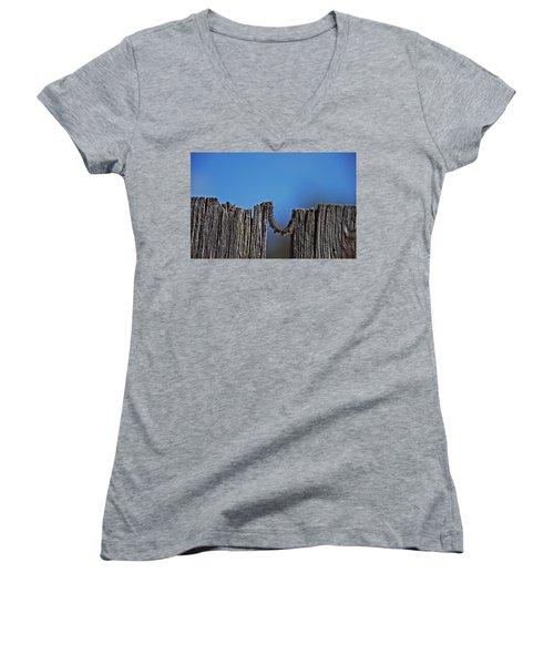 The Caterpillar Women's V-Neck T-Shirt (Junior Cut) by Cendrine Marrouat