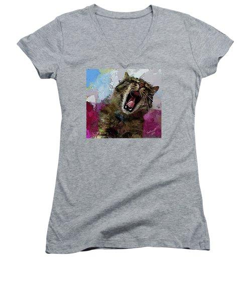 The Cat's Meow Women's V-Neck T-Shirt (Junior Cut) by Ted Azriel