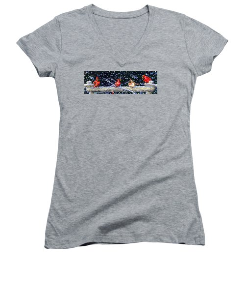The Cedar Rail Gang Women's V-Neck T-Shirt