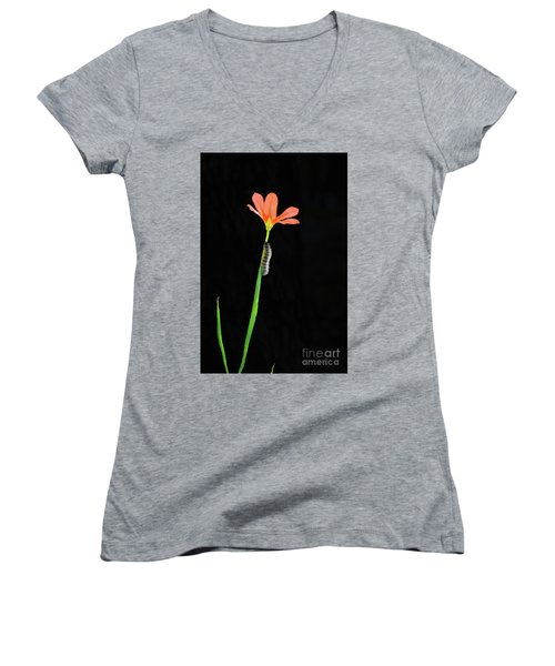 The Climb Women's V-Neck T-Shirt (Junior Cut) by Cassandra Buckley