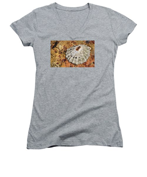 The Common Limpet Women's V-Neck T-Shirt (Junior Cut) by Werner Lehmann