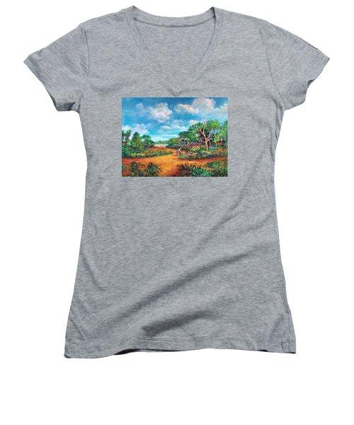 The Cycle Of Life Women's V-Neck T-Shirt (Junior Cut) by Randy Burns
