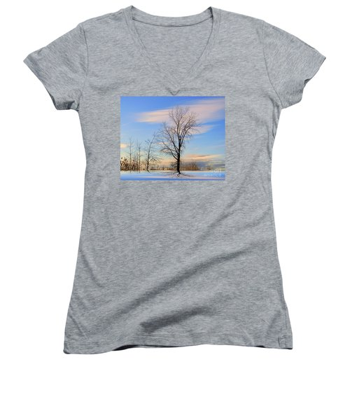 The Delight Women's V-Neck T-Shirt (Junior Cut) by Elfriede Fulda