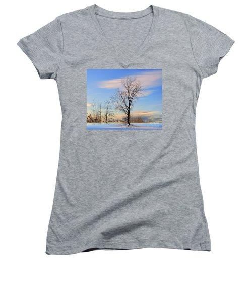The Delight Women's V-Neck T-Shirt