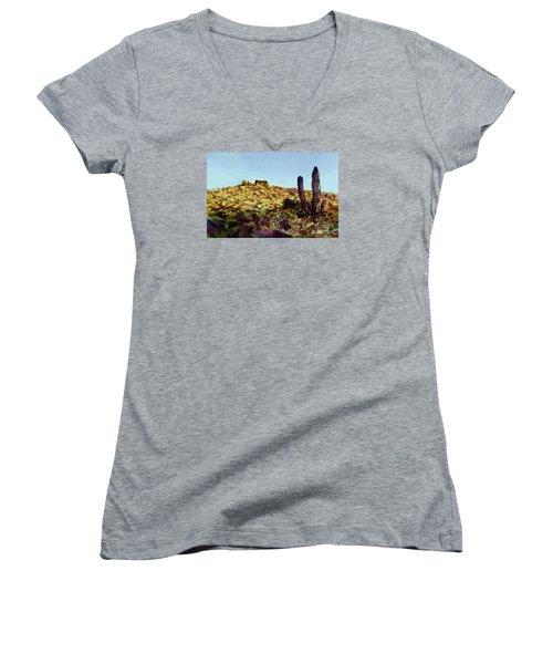 The Desert Place Women's V-Neck T-Shirt