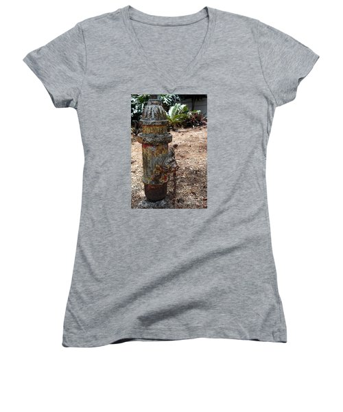 Women's V-Neck T-Shirt (Junior Cut) featuring the photograph The Doggy Did It by Irma BACKELANT GALLERIES