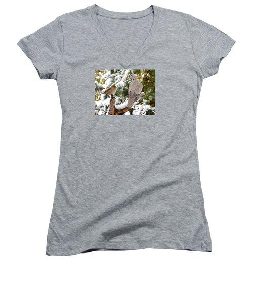 The Dove And The Swallow Women's V-Neck T-Shirt (Junior Cut) by Deborah Moen