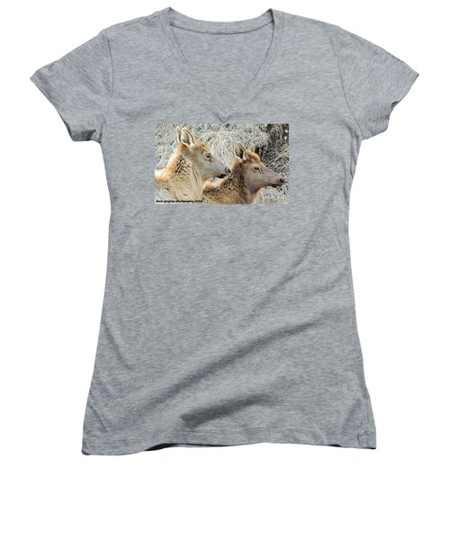 The Elk Of Winter  Women's V-Neck (Athletic Fit)