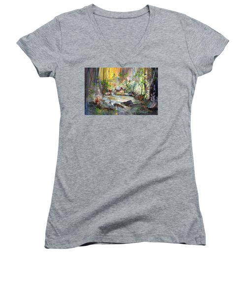 The Enchanted Pool Women's V-Neck T-Shirt (Junior Cut) by P Anthony Visco