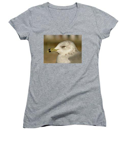 The Eye Of The Seagull Women's V-Neck