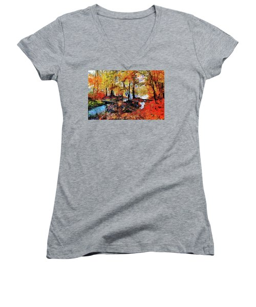 The Failing Colors Of Autumn Women's V-Neck