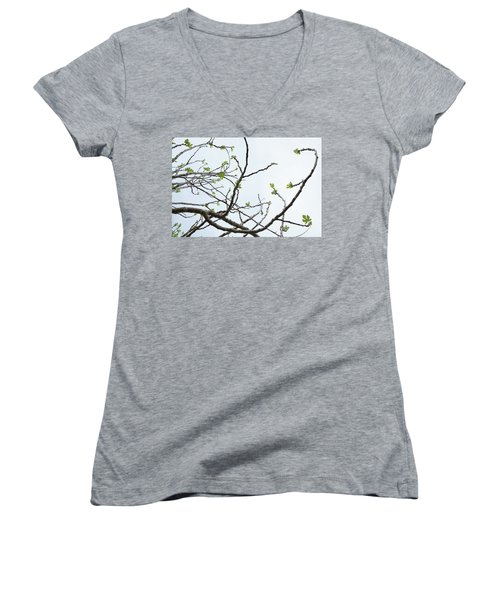 The Fig Tree Budding Women's V-Neck (Athletic Fit)
