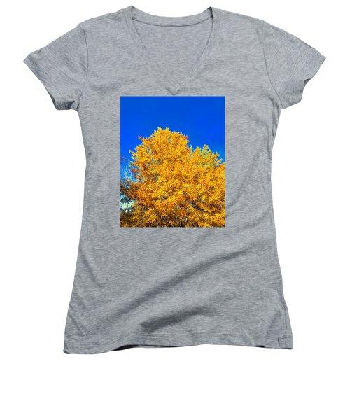 The Flare Of Fall On A Clear Day Women's V-Neck