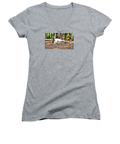 The Forest And The Deer Women's V-Neck T-Shirt (Junior Cut) by James Potts