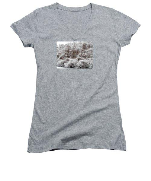 Women's V-Neck T-Shirt (Junior Cut) featuring the photograph The Forest Hush by Lynda Lehmann