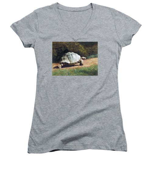 The Giant Tortoise Is Walking Women's V-Neck T-Shirt