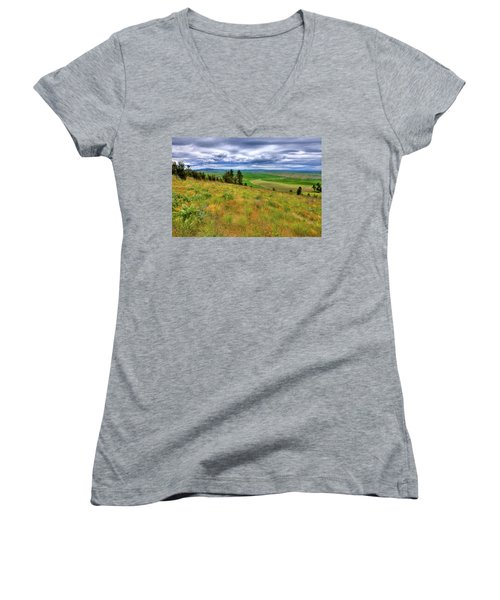 The Grasses Of Kamiak Butte Women's V-Neck
