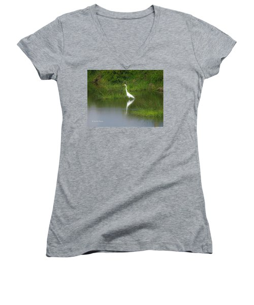 Great Egret By The Waters Edge Women's V-Neck