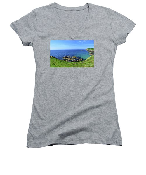 The Greater Saltee Island Women's V-Neck (Athletic Fit)
