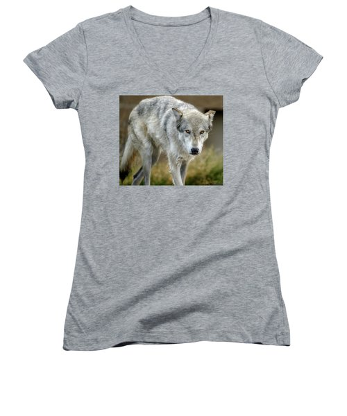 The Grey Wolf Shake Women's V-Neck (Athletic Fit)